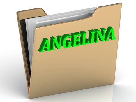 ANGELINA- bright green letters on gold paperwork folder on a white background