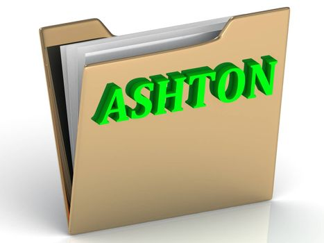 ASHTON- bright green letters on gold paperwork folder on a white background