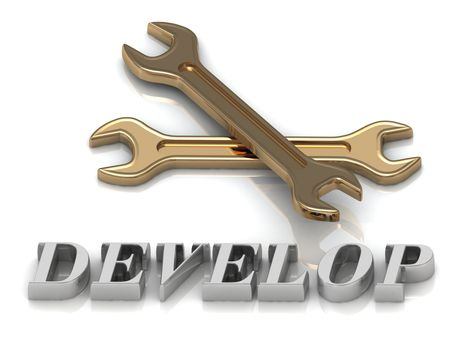 DEVELOP- inscription of metal letters and 2 keys on white background