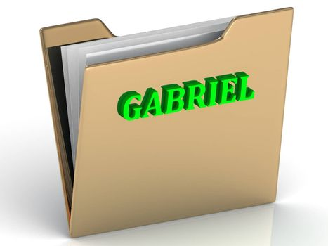 GABRIEL- bright green letters on gold paperwork folder on a white background