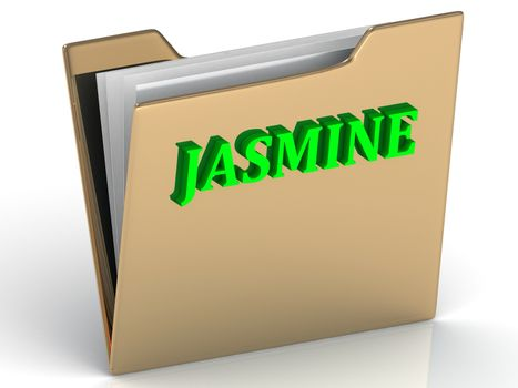 JASMINE- bright green letters on gold paperwork folder on a white background