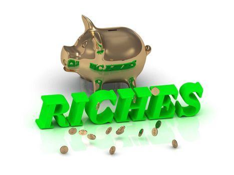 RICHES- inscription of green letters and gold Piggy on white background