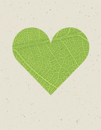 Heart shape with green leaf texture. Nature background with free