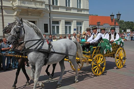 Horse and wedding wagon show during Dakovo vezovi (Dakovo Summer Festival) on July 05, 2009 in Dakovo, Croatia