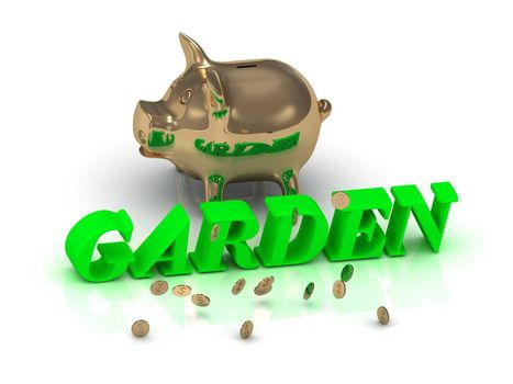 GARDEN- inscription of green letters and gold Piggy on white background