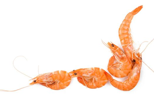 Shrimp background with copyspace. Fresh shrimp on white background top view.
