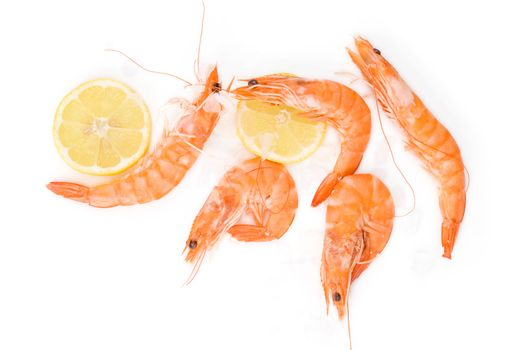 Shrimp background with copyspace. Fresh shrimp with lemon on ice on white background top view.