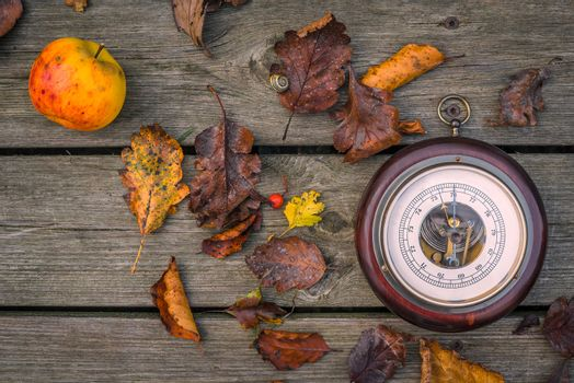 Barometer among leaves in the autumn