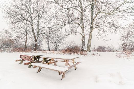 Benches in the snow at wintertime