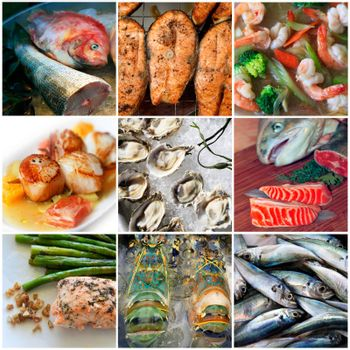 Sea food collage made from nine photographs