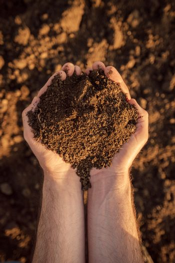 Arable land soil in hands of a responsible farmer