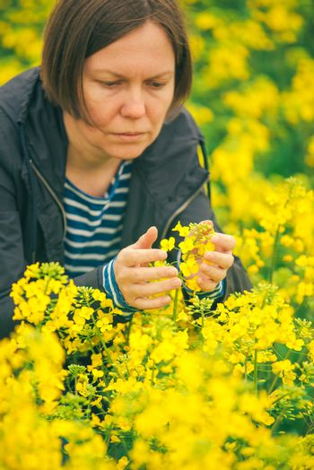 Female agronomist in field of blooming rapeseed