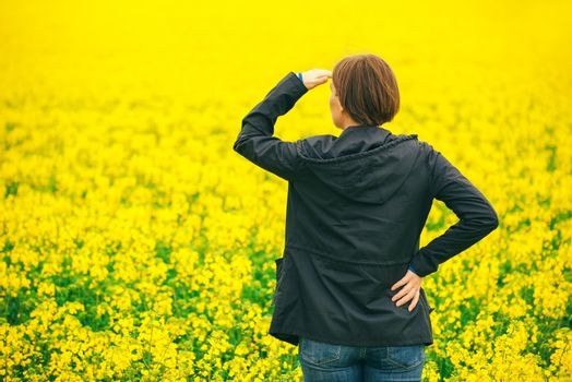 Agronomist standing in field of blooming cultivated rapese