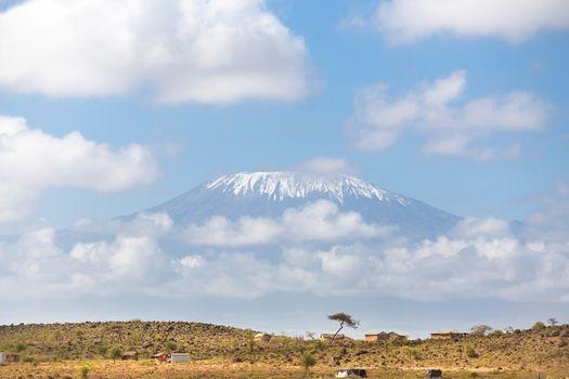 Kilimanjaro overlooking african savannah.
