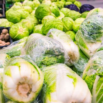 Fresh napa cabbage at farmers market