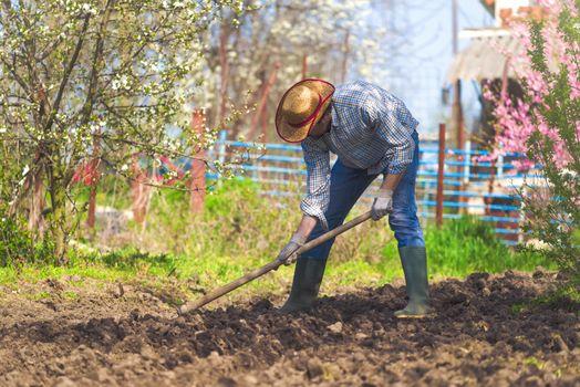 Man hoeing vegetable garden soil