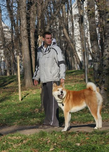 Beautiful Akita Inu and its owner walking in public park