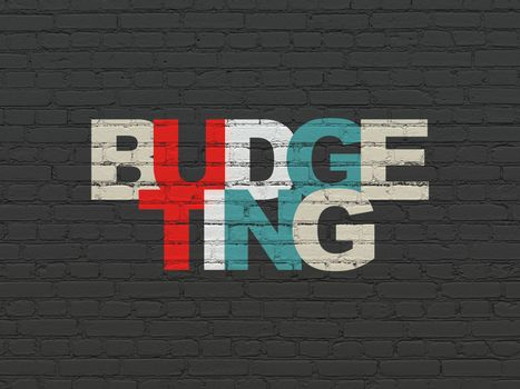 Business concept: Budgeting on wall background