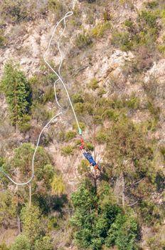 Bungee jumper free falling at Bloukrans Bridge