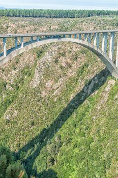 Bungee jumper at Bloukrans Bridge
