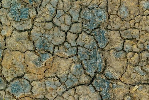 Mudcracks and soil drought