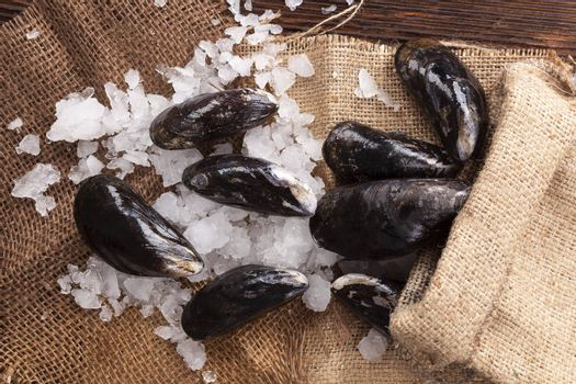 Rustic seafood background. Shells on ice on wooden table in brown burlap bag. Culinary seafood background.