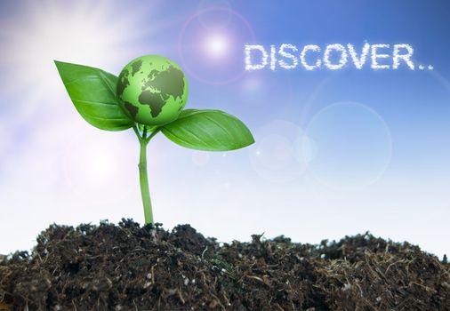Explore discover concept