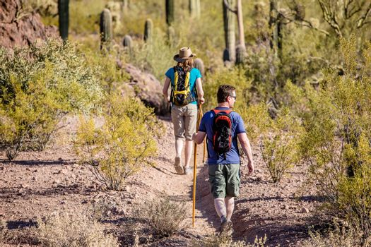 Desert Hikers on Rugged Trail