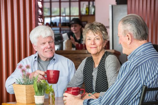 Mature Group in Coffee House
