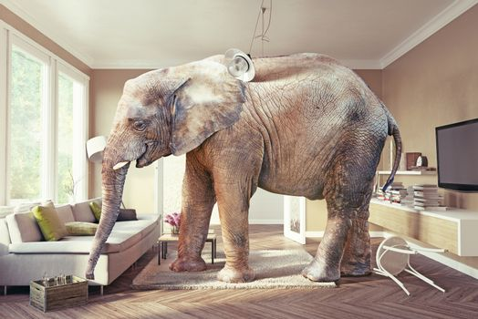 Big elephant and the case of beer  in the living room. 3d concept
