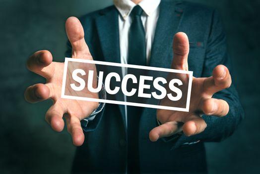 Businessman grabbing the success