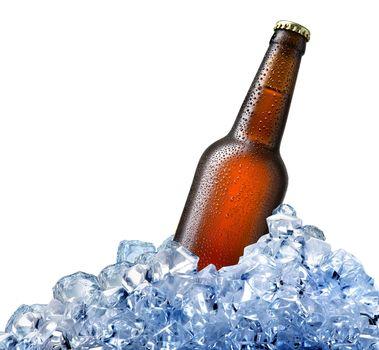 Bottle of beer in ice