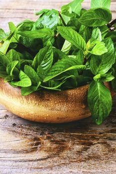 Fragrant mint leaves