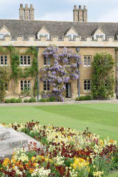 Cambridge university Courtyard with Flowers