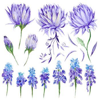 Watercolor Purple Flowers Set