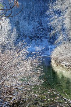Winter Leaves Snow Ice  Wenatchee River Valley Leavenworth Washi