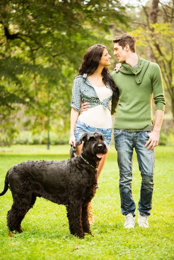 Young Couple With Giant Schnauzer