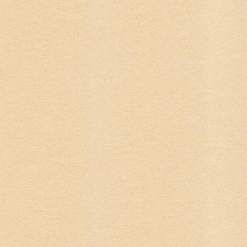 Beige Grained Paper Texture