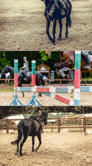 photos of equestrian competitions