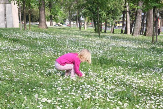 Young girl in public park playing with dandelion