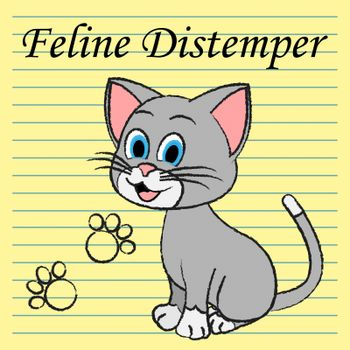 Feline Distemper Meaning Pedigree Vaccine And Cats
