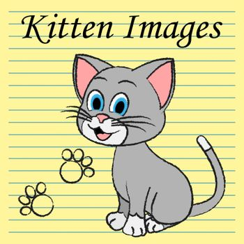 Kitten Images Indicating Domestic Cat And Kitties
