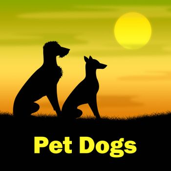 Pet Dogs Showing Domestic Animal And Field