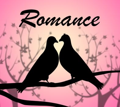 Romance Doves Representing Love Birds And Fondness