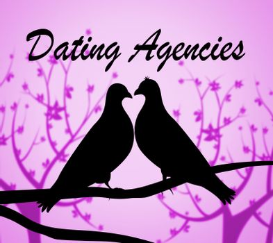 Dating Agencies Showing Companies Date And Business
