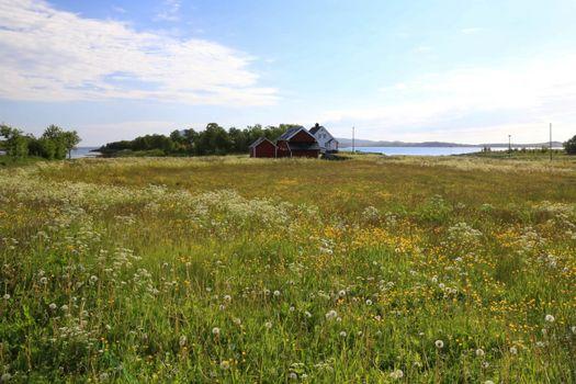 Bildene fra tur rundt Laukholmen i Brønnøy