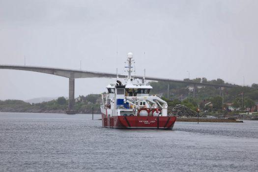 MS Viktoria Lady er 53,8 meter lang og 12,8 meter bred, og er bygget i 2006. Fartøyet på i alt 1186 bruttotonn har en lasteromskapasitet på 1000 m3.   Brønnbåten er blant annet utrustet med følgende: 2 x 16″ laste- og losseslanger ozon- og oksygenanlegg filter på sirkulasjonsvann CO2-luftere for lukket transport Avlusningsanlegg H2O2.