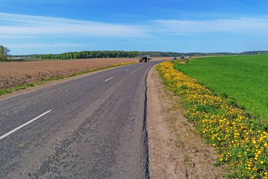 Along the road grow yellow dandelions.