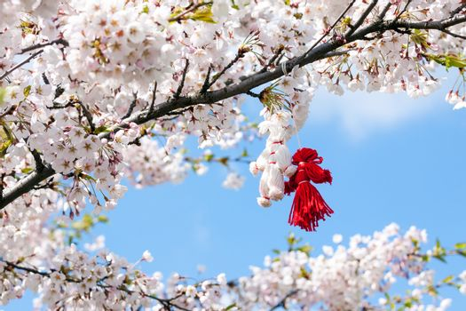 Blooming cherry tree in spring with pair of handmade thread toys hanging on the branch