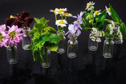 Jars with plants